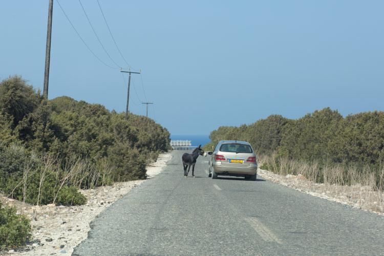 Будут ли отремонтированы дороги на Северном Кипре?