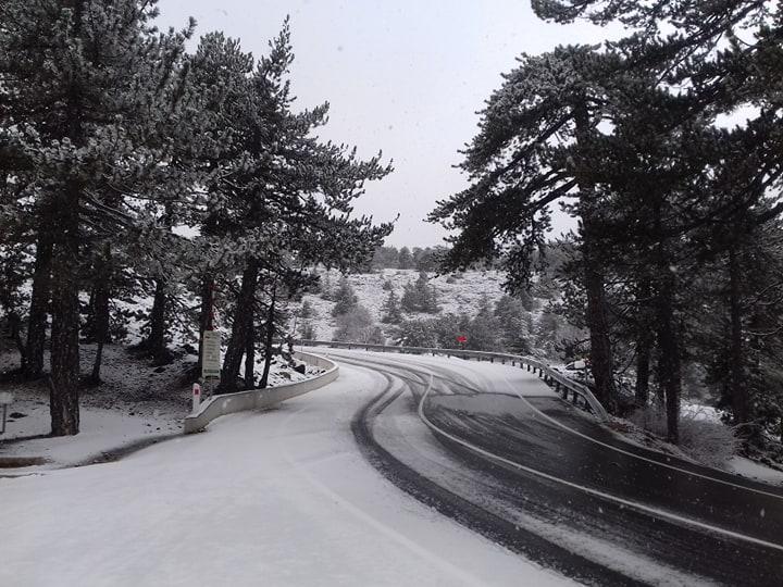 Первый снег выпал сегодня в горах Троодос (видео)