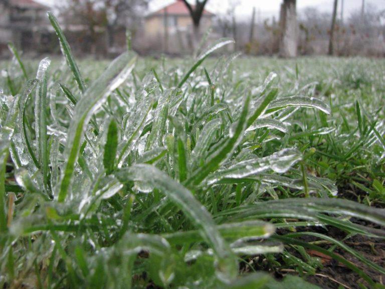 Погода на Кипре на 7-9 градусов ниже сезонных норм