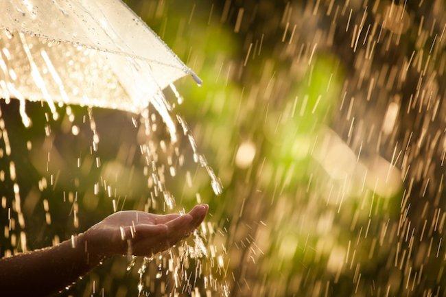 Нас ожидает неделя дождей