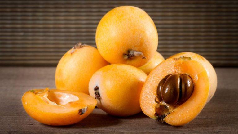 Мушмула: в чем польза этого фрукта?