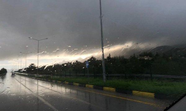 Прогноз дождей на следующие семь дней